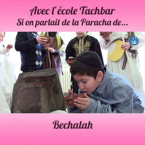 L'ECOLE DE TACHBAR et Bechalah