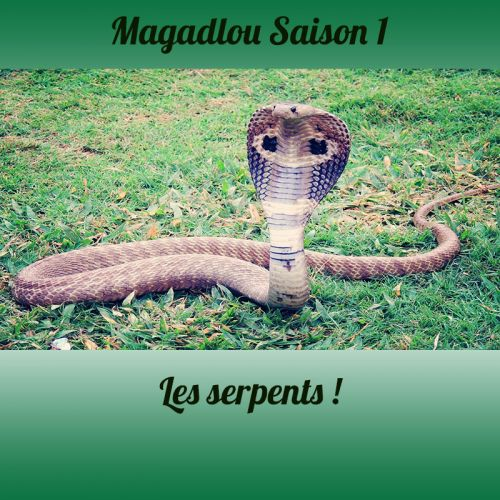 MAGADLOU S1 Le serpent
