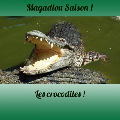 MAGADLOU S1 Les crocodiles