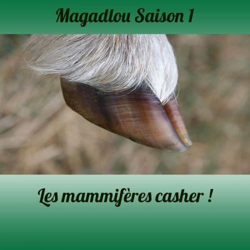 MAGADLOU S1 Les mammifères