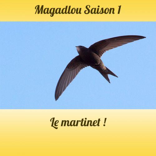 MAGADLOU S1 Le martinet