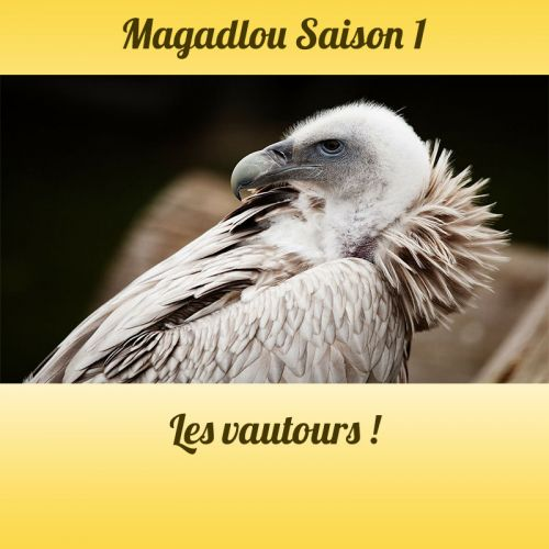 MAGADLOU S1 Les vautours
