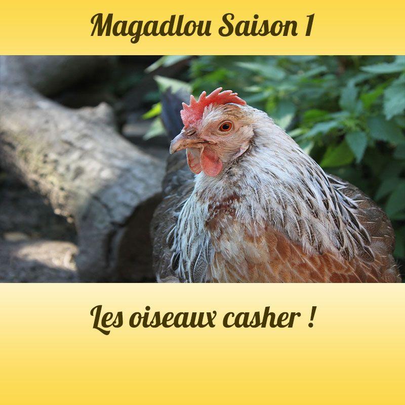 MAGADLOU S1 Les oiseaux