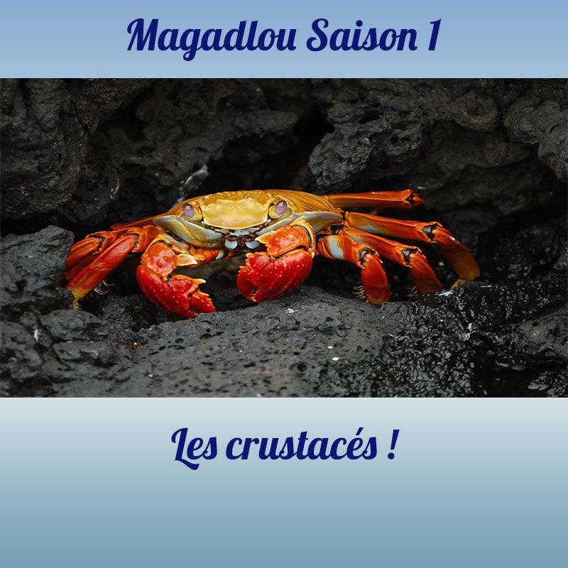 MAGADLOU S1 Les crustacés