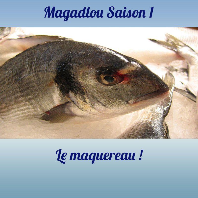 MAGADLOU S1 Le maquereau