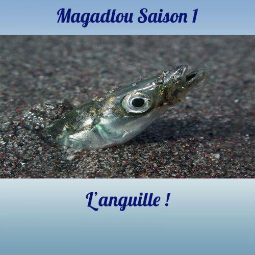 MAGADLOU S1 L'anguille