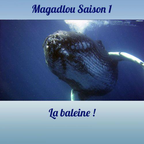 MAGADLOU S1 La baleine