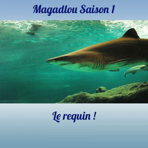 MAGADLOU S1 Le requin