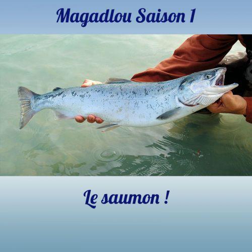 MAGADLOU S1 Le saumon
