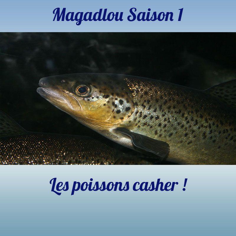MAGADLOU S1 Les poissons