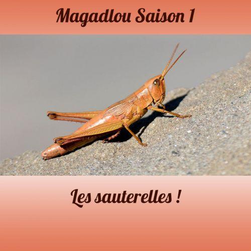 MAGADLOU S1 Les sauterelles