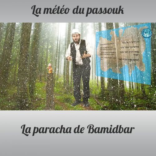 LA METEO DU PASSOUK Bamidbar