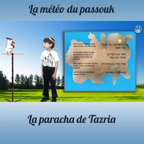 LA METEO DU PASSOUK Tazria