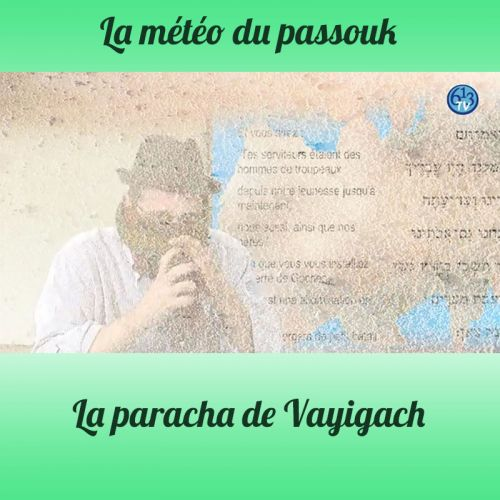 LA METEO DU PASSOUK Vayigach