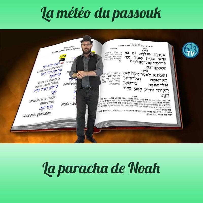 LA METEO DU PASSOUK Noah