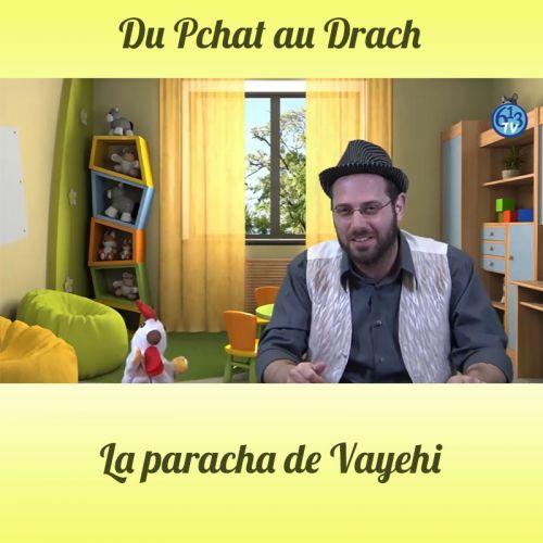DU PCHAT AU DRACH Vayehi
