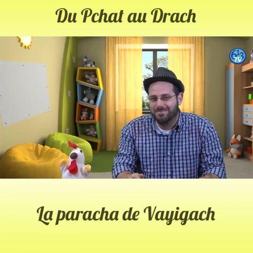 DU PCHAT AU DRACH Vayigach