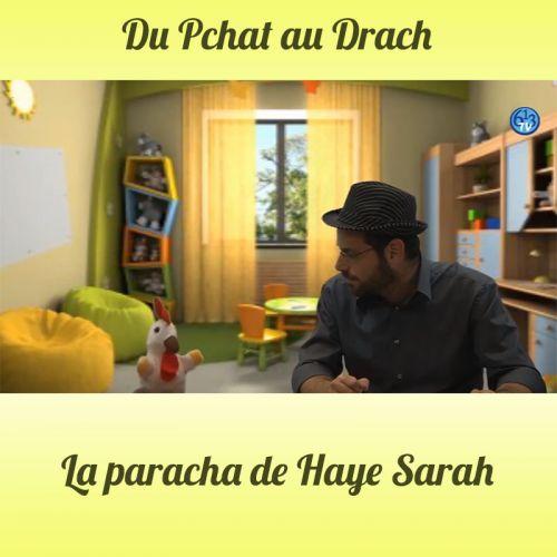 DU PCHAT AU DRACH Haye Sarah