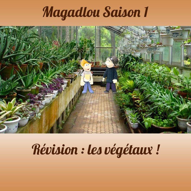 MAGADLOU S1 Quizz Végétaux