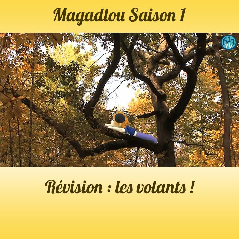 MAGADLOU S1 Quizz Volatiles
