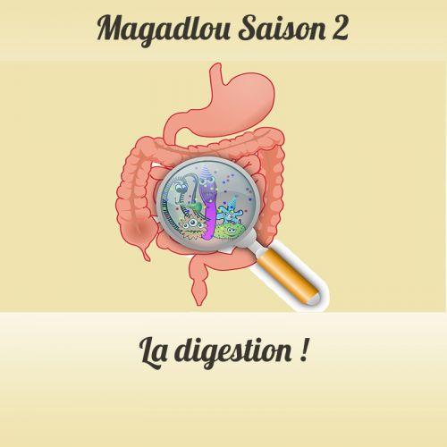 MAGADLOU S2 La digestion