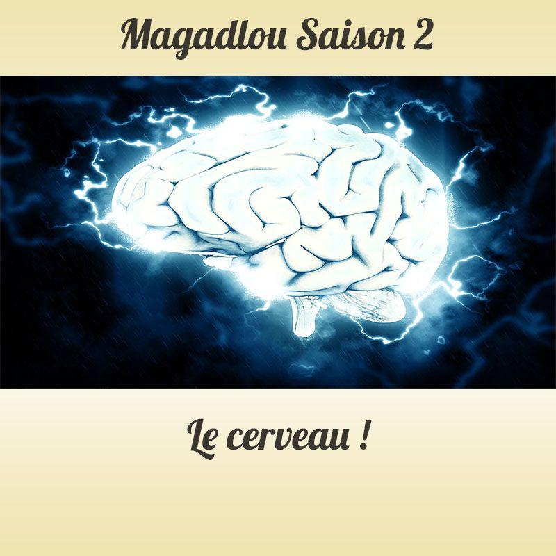 MAGADLOU S2 Le cerveau