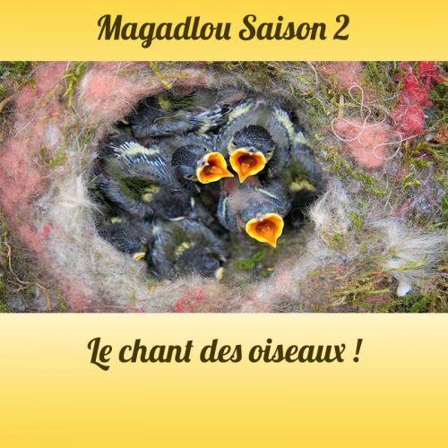 MAGADLOU S2 chant des oiseaux