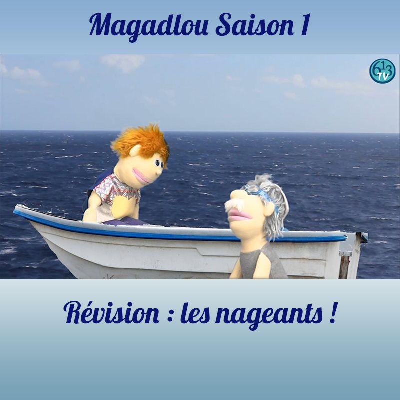 MAGADLOU S1 Quizz Aquatiques