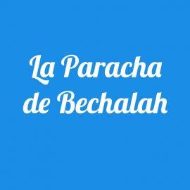 Parachat Béchalah