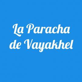 Parachat Vayakhel