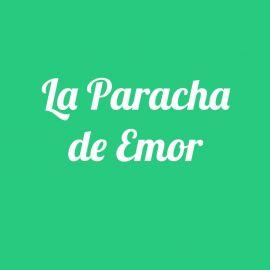 Parachat Emor