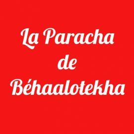 Parachat Béhaalotékha
