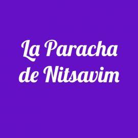 Parachat Nitsavim